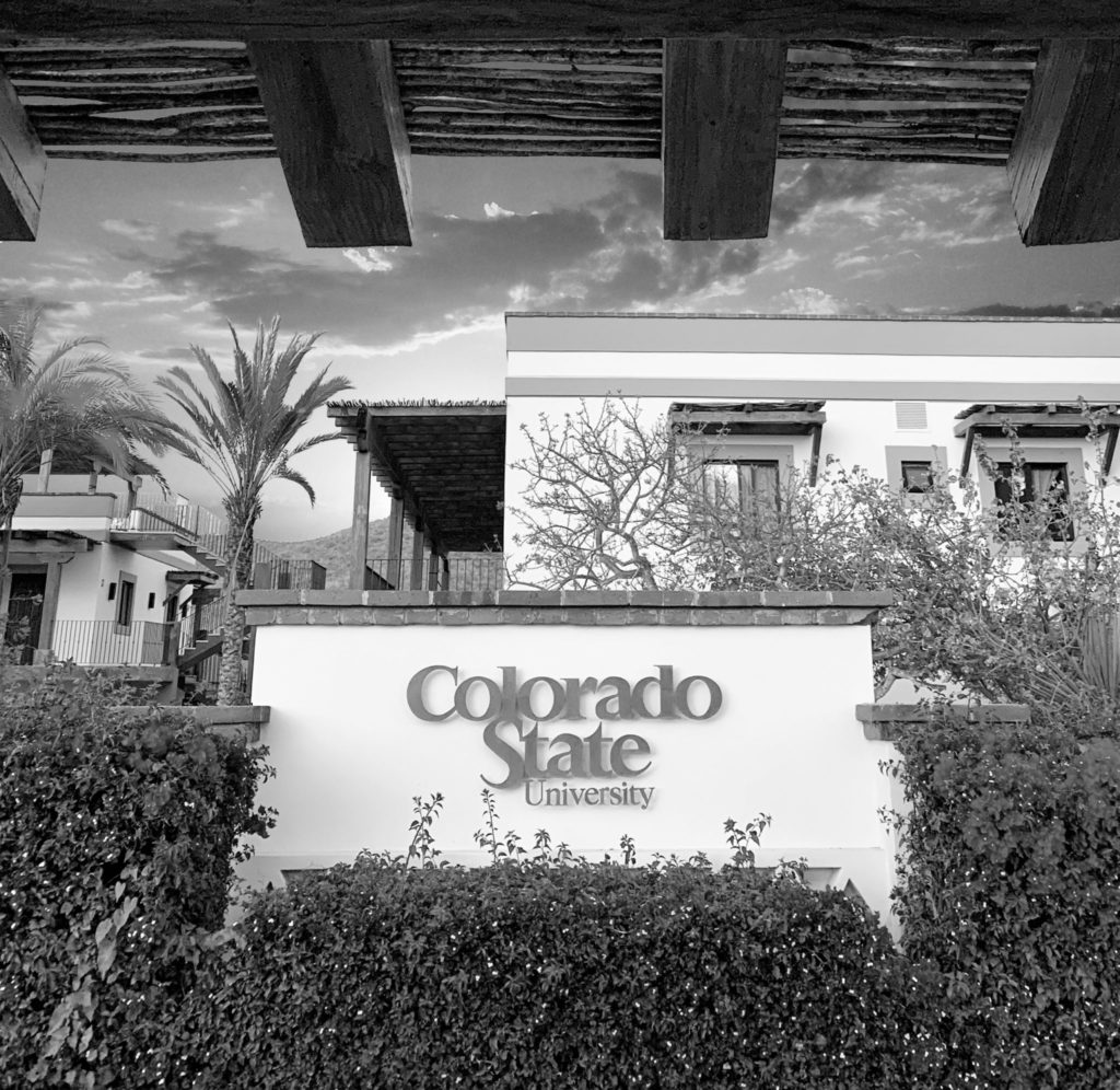 Black and white view of CSU sign