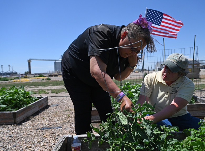 Two people work in a community garden.